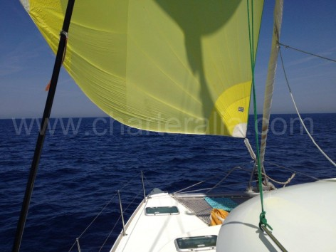 catamaran sailing with gennaker