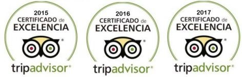 Certificate Of Excellence TripAdvisor CharterAlia Ibiza Yacht