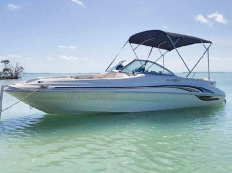 Sea Ray speed boat 210 for charter in Ibiza with bimini