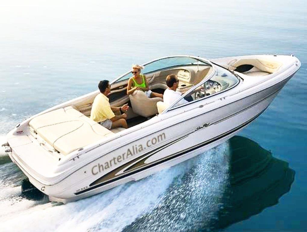 Speed boat hire in Ibiza Sea Ray 210 for 8 people