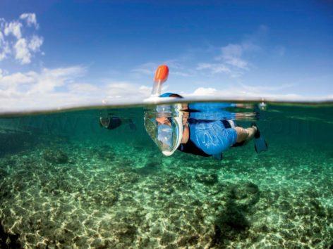 Ibiza Snorkel Mask