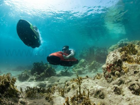 Sea Bob Ibiza White Island