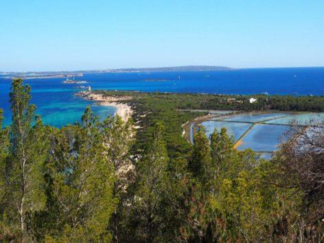 Formentera view from Es Cavallet beach in Ibiza