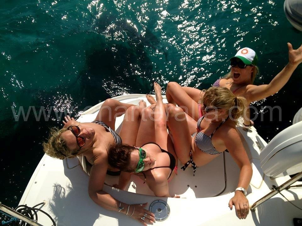poppa catamarano tribordo