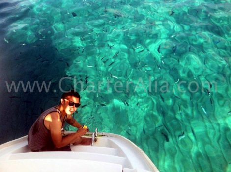 Een Cala Conta met een prachtig uitzicht op zee en een transparant zwembad op een Lagoon 380.
