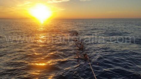 pescar en la bahia de san antonio en ibiza