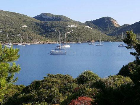 Alquiler barco por la Isla de Cabrera Mallorca